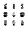 cactuses in pots glyph icons set vector image vector image