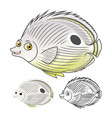 Four Eye Butterfly Fish vector image vector image