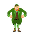 leprechaun angry dwarf with red beard aggressive vector image vector image