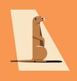 meerkat bask in the sun vector image