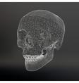 White polygonal skull on white studio background vector image