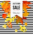 bright autumn sale striped poster vector image