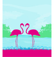 Flamingo couple in wild nature landscape vector image