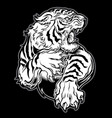 animals angry tiger drawing on black background vector image vector image
