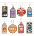 different badges and tags on the theme of sale vector image