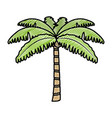 doodle tropical palm nature tree style vector image vector image