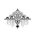elegant baroque ornament in victorian style vector image