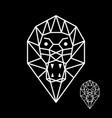 flat line lion vector image