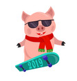 isolated cartoon piggy symbol year 2019 skating vector image vector image