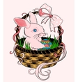 Pink Easter bunny sitting in a wicker basket vector image vector image