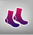 socks sign purple gradient icon on white vector image vector image