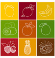 tropical fruit linear icons vector image vector image