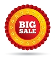 big sale red label with stars vector image