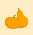 Couple Pumpkins vector image vector image