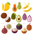 exotic tropical flat design fruits vector image vector image
