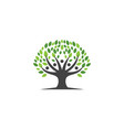 family tree logo template icon design vector image vector image