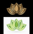 luxury leaf lotus vector image vector image