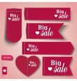 Set of bubbles stickers labels tags Big Sale vector image vector image