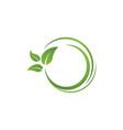 bio leaf icon design vector image vector image