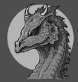 dragon head vector image