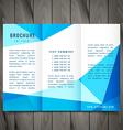 modern trifold brochure design vector image