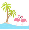 two pink flamingo standing on one leg palms tree vector image vector image