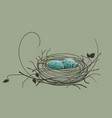 bird eggs in the nest vector image