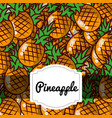 delicious pineapple fresh fruit label pattern vector image vector image