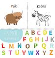 letter y z yak zebra zoo alphabet english abc vector image