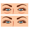 woman eyes before and after cosmetic procedure vector image vector image