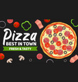 fast food pizza delivery poster vector image