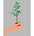 Hand holds profit money vector image