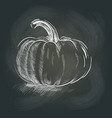 pumpkin on the blackboard vector image vector image