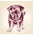 puppy dog hand drawn illustration vector image vector image