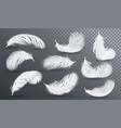 falling white fluffy twirled feather set vector image vector image