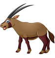 happy oryx cartoon isolated on white background vector image vector image