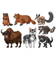 many types of wild animals vector image vector image
