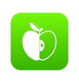 sliced apple icon digital green vector image vector image