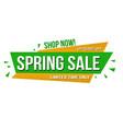 spring sale banner design vector image vector image