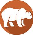 Wild Bear Icon vector image