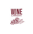wine shop label cover 4 vector image vector image