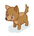 dog cub isometric 3d cute puppy baby animal vector image vector image