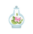 fresh pink flower with green leaves inside glass vector image vector image