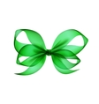 Green Transparent Bow Top View on Background vector image vector image