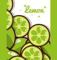 lemon fruit juicy sweet poster vector image