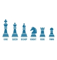 Named chess piece icons vector image