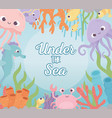 octopus jellyfish crab fishes shrimp life coral vector image vector image