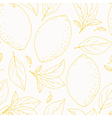 Seamless pattern with outline hand drawn lemon vector image vector image