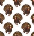 seamless turkey pattern vector image vector image