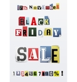 Background of Black friday sale vector image